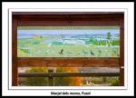Marjal_dels_moros-Puzol-Vicente_Riera_Peiro